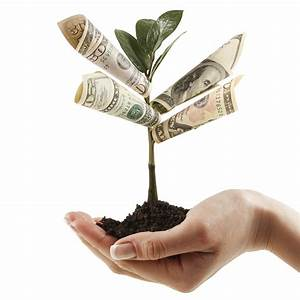 Photo of a cupped handful of soil. Growing out of the soil is a young tree sapling that has rolls of paper money notes attached to the main stem. The photo is titled 'Money Tree' and the photo makes it look like the hand is holding a tree that is growing paper money!