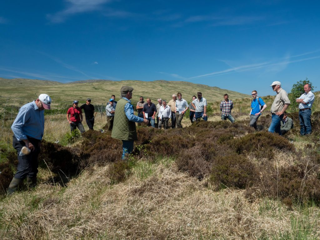 Upland habitats event on Jura - group of people in an upland habitat learning about what indicators to look for when assessing for herbivore damage