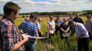 A group of farmers at the Banffshire Soil & Nutrient Network meeting.  They are standing in a crop field discussing soil structure