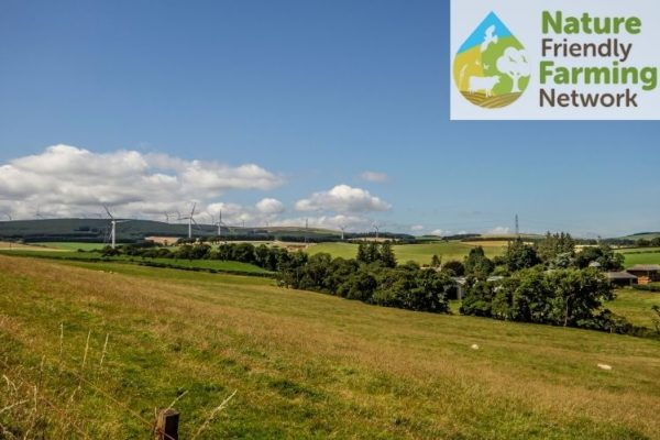 An upland farm scene with grassland field in the foreground and a number of wind turbines in the distance. The Nature Friendly Farming Network logo is embedded in the top right hand corner of the photo.